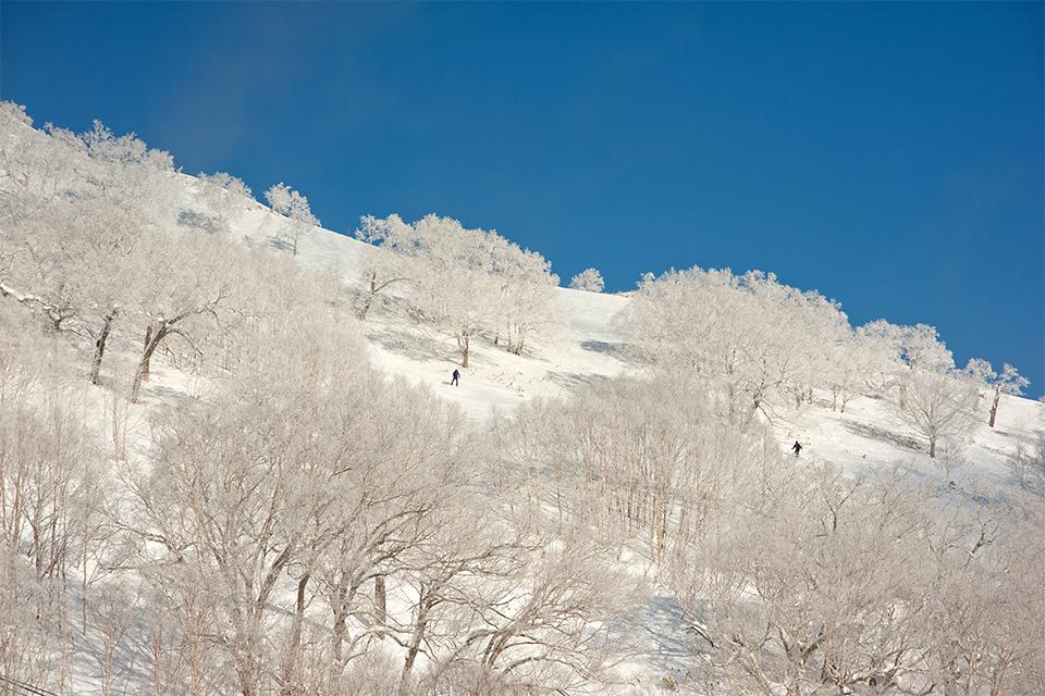 Classy Snow Photography